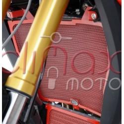 PROTECTOR RADIADOR R&G BMW S1000XR 2015-19